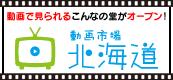 動画市場 北海道