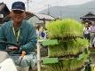 木村式自然栽培米「朝日」のお田植え祭に参加